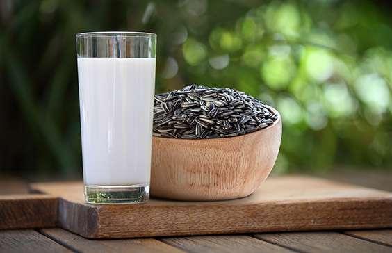 leche de semillas