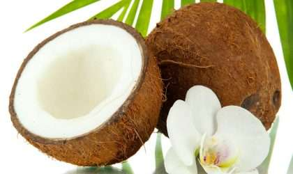 Beneficios de comer coco