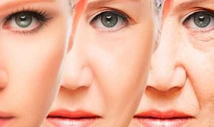 Batido de frutos rojos anti-envejecimiento