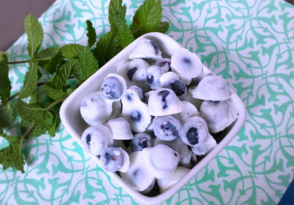 Image result for arándanos con yogurt congelados