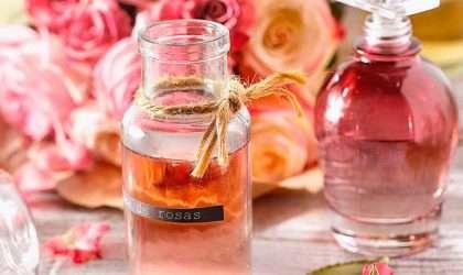 Estos son los mejores aromatizantes para tu hogar