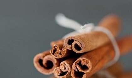 Propiedades medicinales de la canela